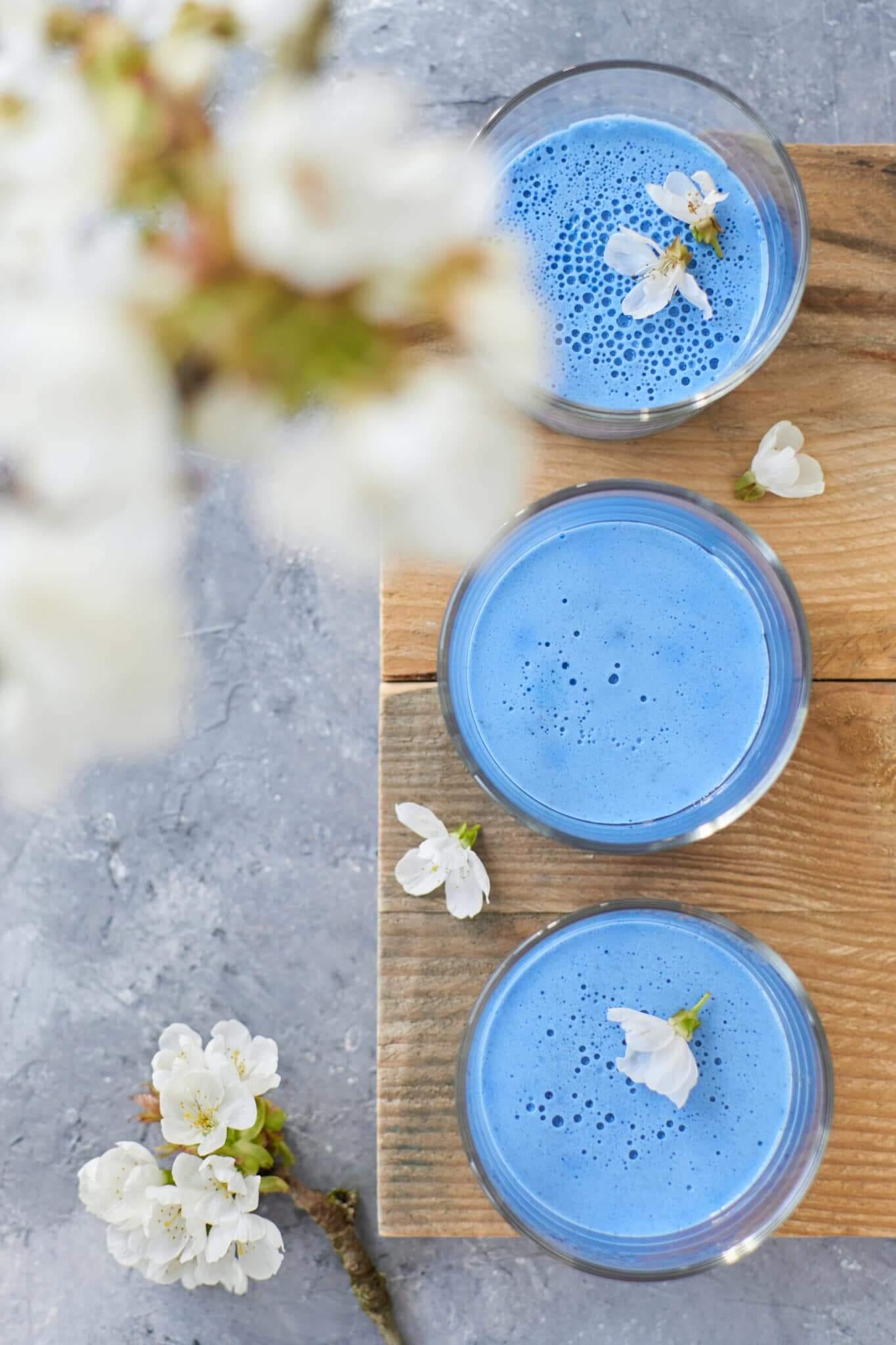 Panna cotta au blue matcha vue de dessus avec fleurs de cerisier blanches