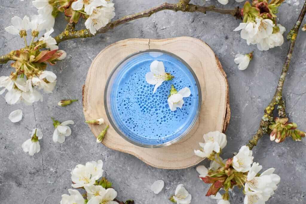 Panna cotta blue vue de dessus avec fleurs de cerisiers